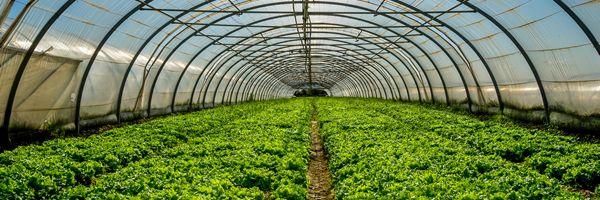 農地法改正後も残された問題と課題