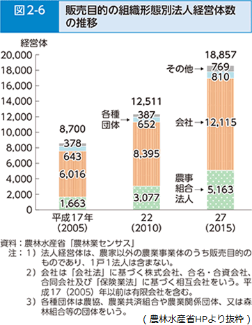 販売目的の組織形態別法人経営体数の推移