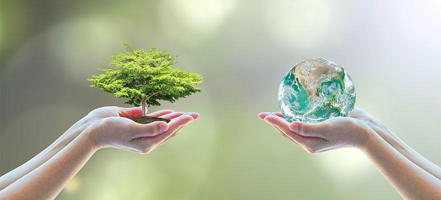 急拡大するグリーンボンドとは~メリット、要件、国内事例を総解説